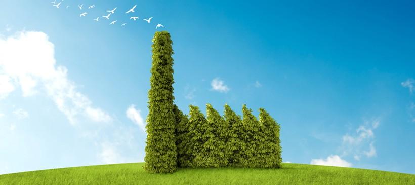 Wir möchten umweltbewusster handeln und das umweltbewusstsein unserer mitarbeiter stärken